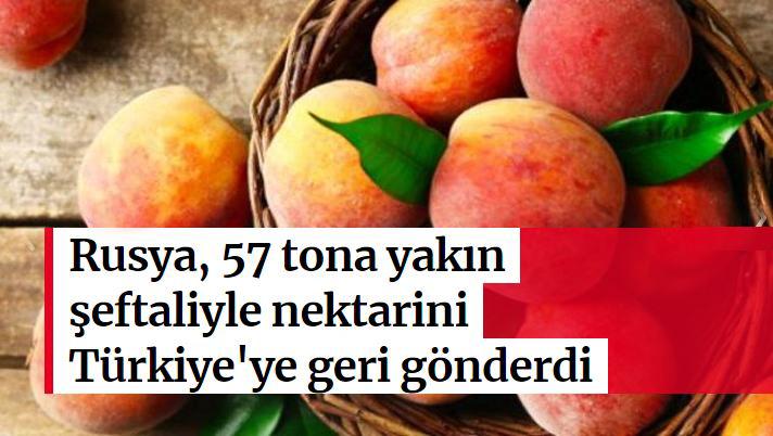 Rusya, 57 tona yakın şeftaliyle nektarini Türkiyeye geri gönderdi
